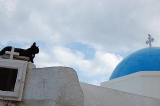 イアの街と猫